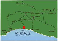 Cornwall Yurts The Monkey Sanctuary Places